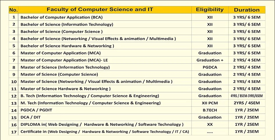 Sangai international university computer science courses