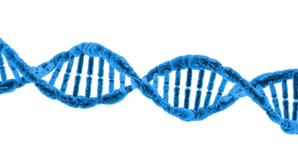 dna ka full form? what is full form of dna