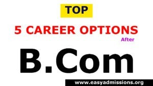 Top 5 career options after B.Com, Jobs, and Salary Check Now
